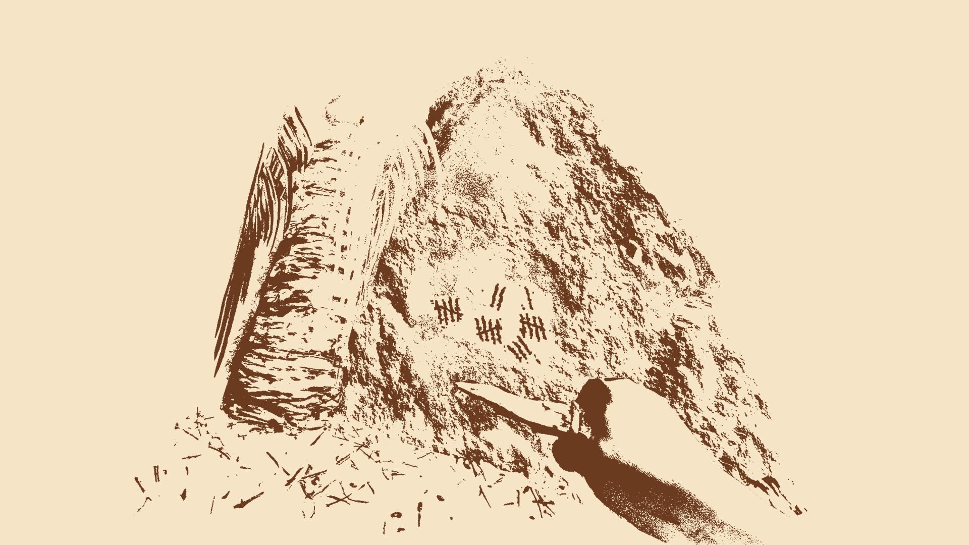 Island Hermit