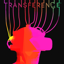 Transference™