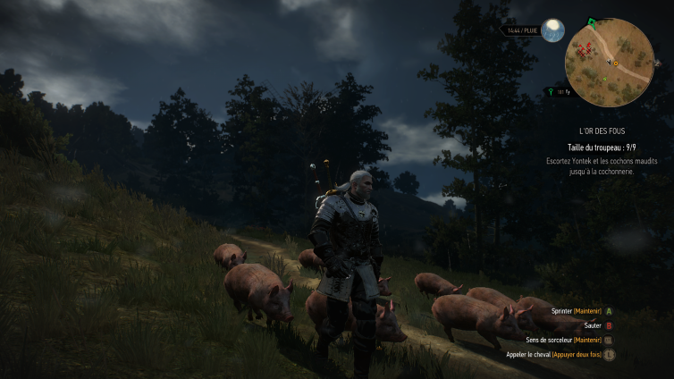 Image de The Witcher 3: Wild Hunt par TylerDurden2300