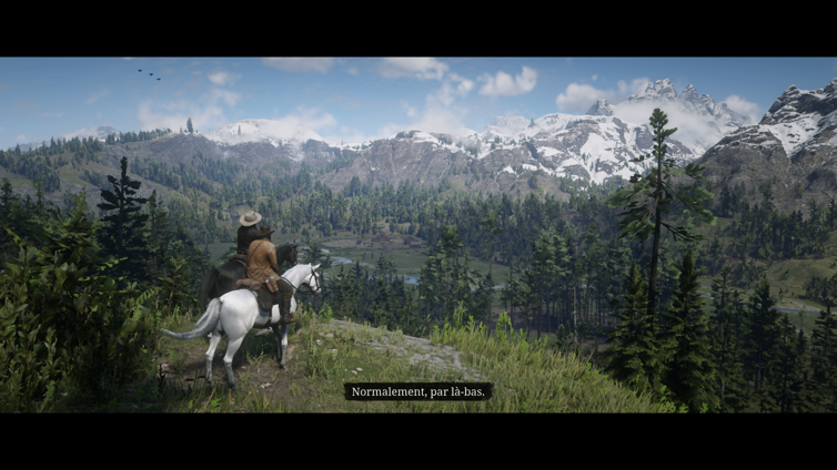 Image de Red Dead Redemption 2 par nfsgamer35