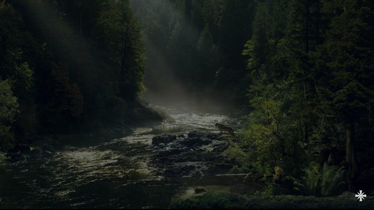 Image de Far Cry® 5 par Altahire