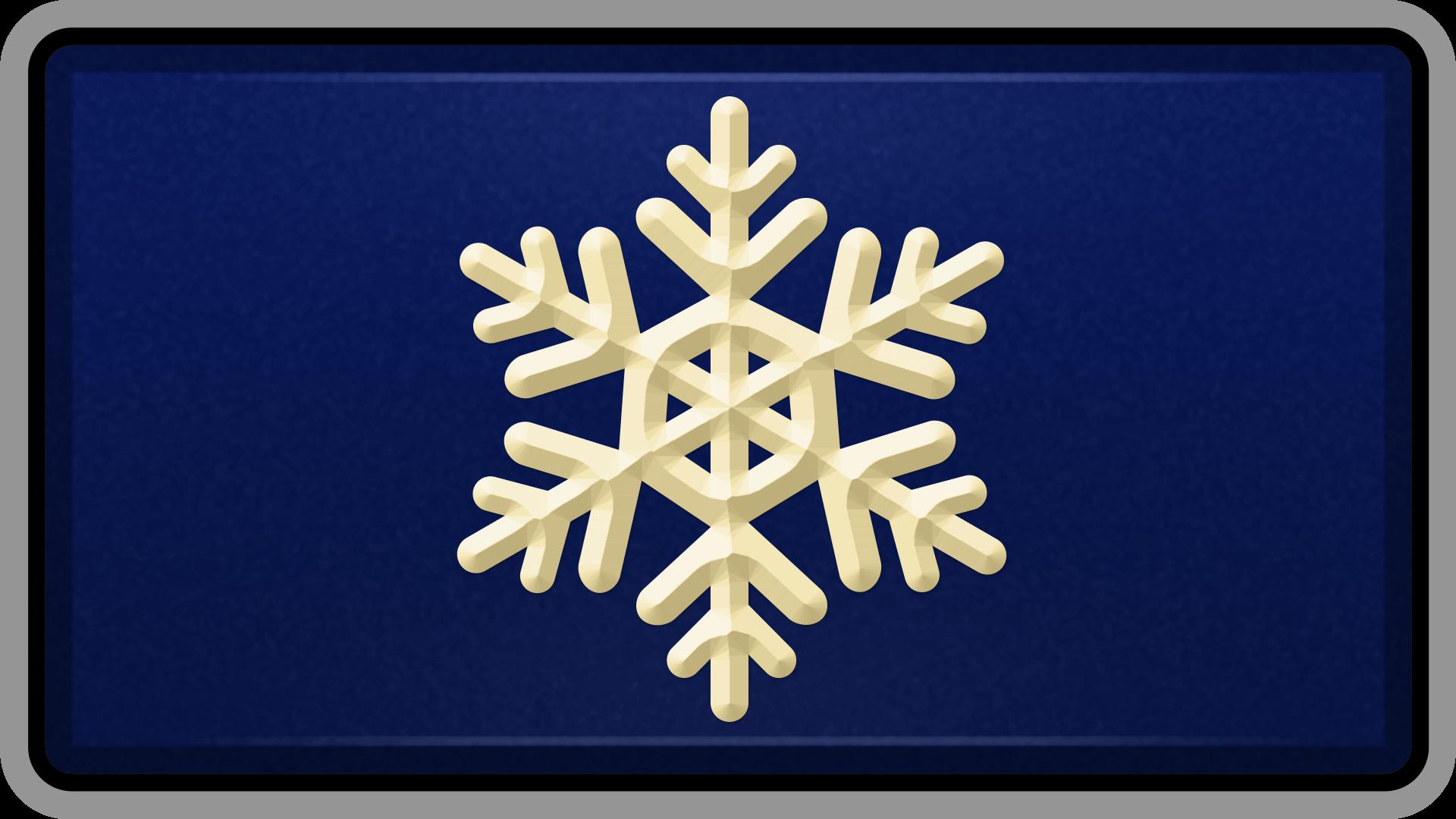Snowfall Success
